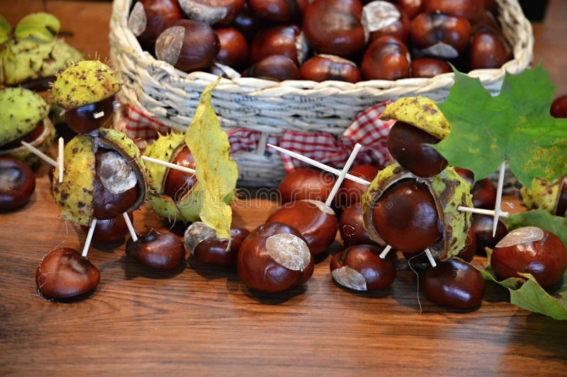 Chestnuts figure knight. Brown chestnuts in a basket in the fall figure knight royalty free stock image