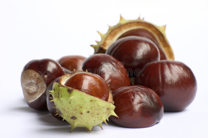 Chestnuts isolated stock photos