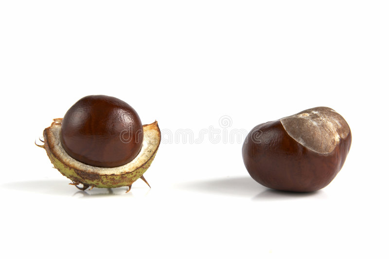 Chestnuts isolated on white stock photos