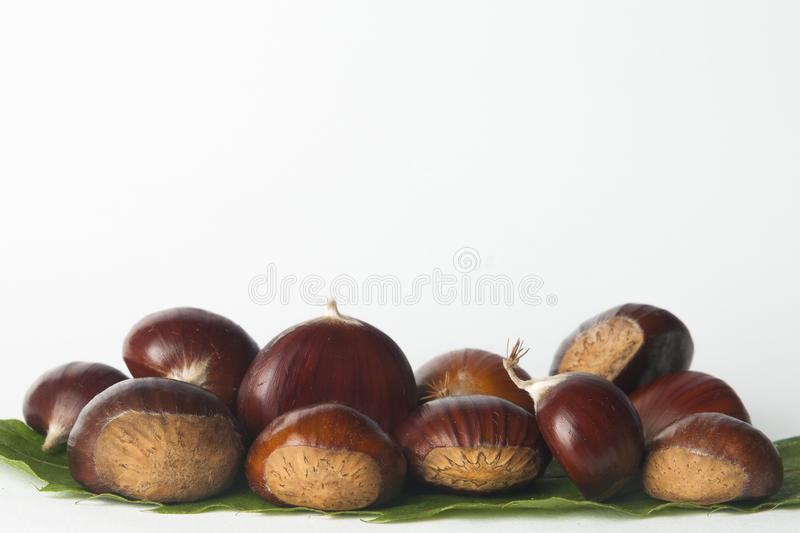 Chestnuts isolated. On white background stock image