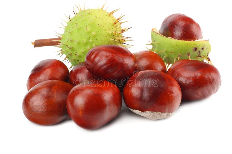 Chestnuts isolated on white background. Healthy background. royalty free stock images