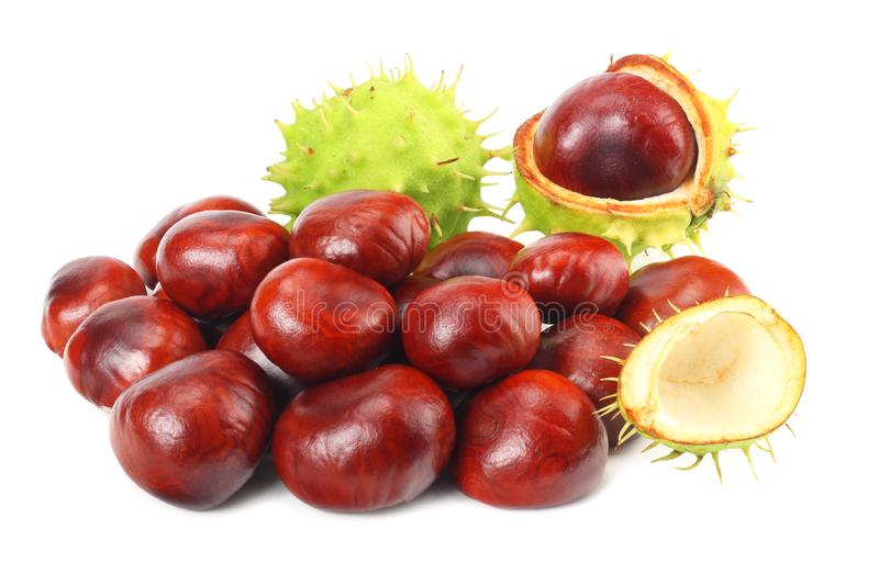 Chestnuts isolated on white background. Healthy background. royalty free stock photo