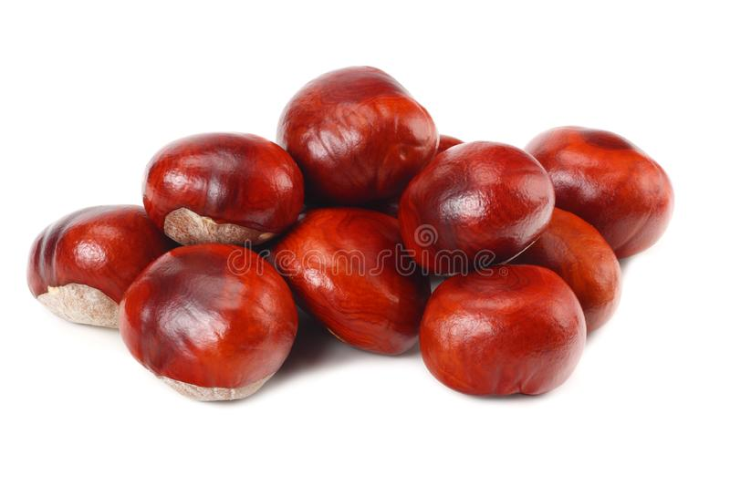 Chestnuts isolated on white background. Healthy background. Healthy food stock image