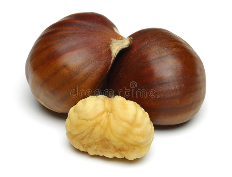 Chestnuts isolated on white background. Macro shot stock images