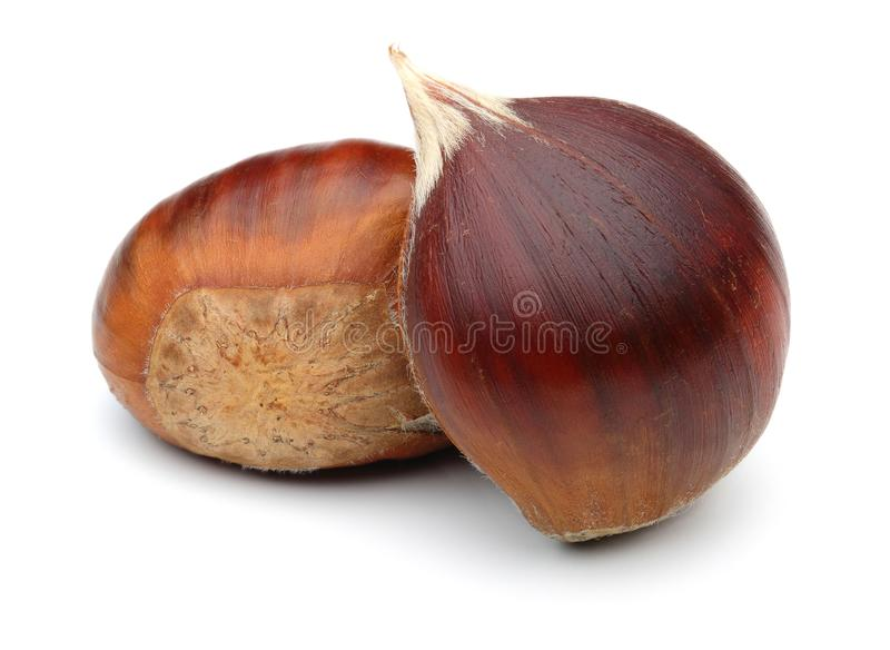 Chestnuts isolated on white background. Studio shot stock images