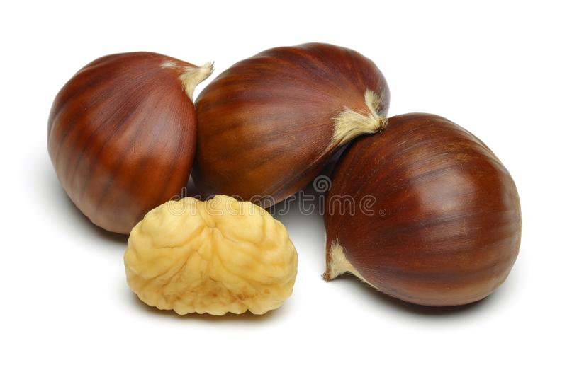 Chestnuts isolated on white background. Studio shot royalty free stock photos