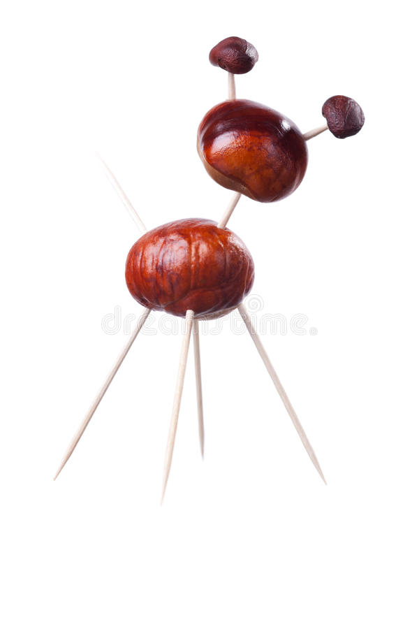 Free Chestnuts Toys Stock Photo - 16086980