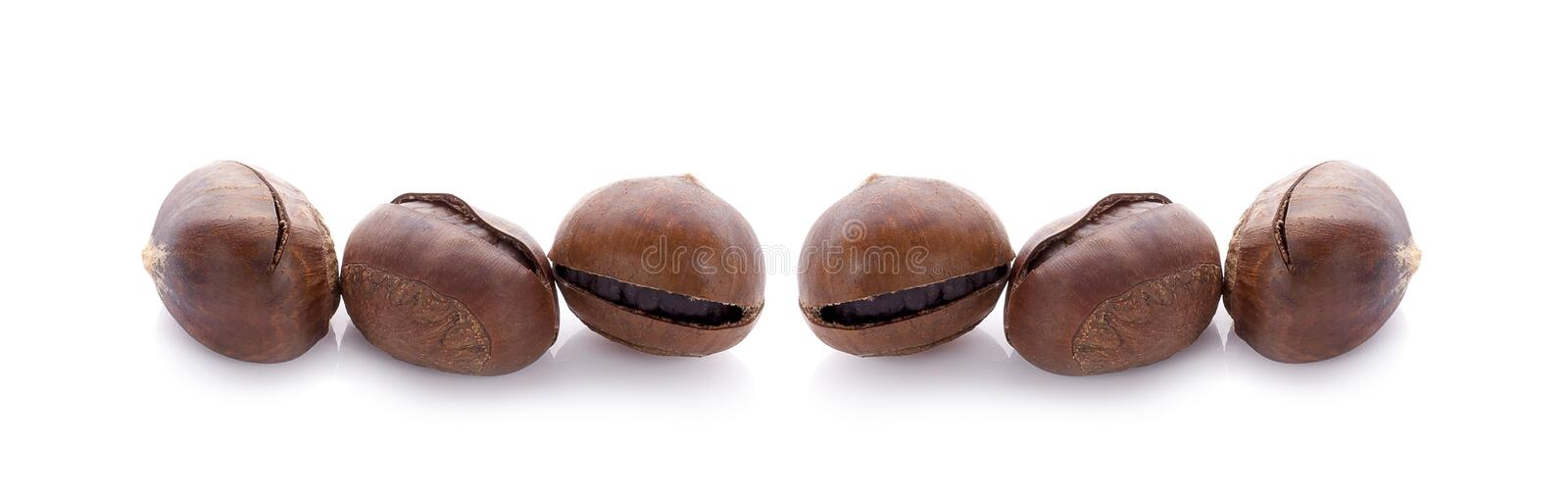 Chestnuts an isolated on white background.  royalty free stock photo