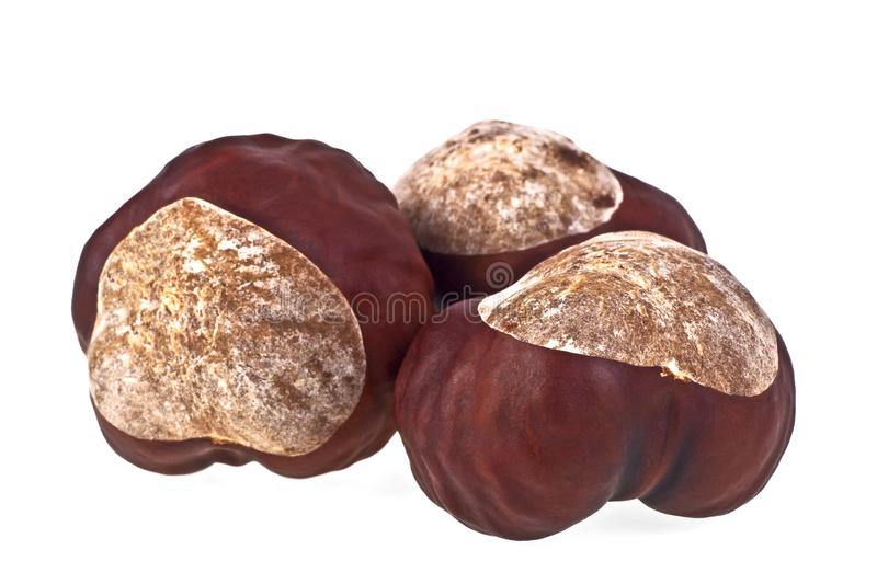 Chestnuts on a white background royalty free stock image