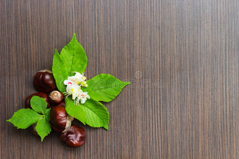 Chestnuts on a wooden table with leaves and flowers. Useful as background sample stock images