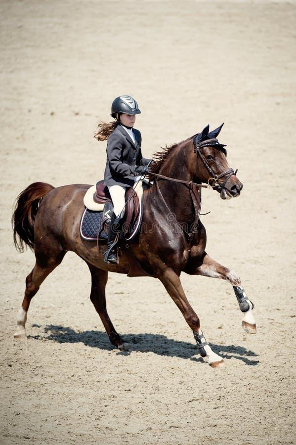 Cheval équestre Rider Jumping Décrivez montrer un concurrent exécutant en concurrence de sauter d'exposition photographie stock