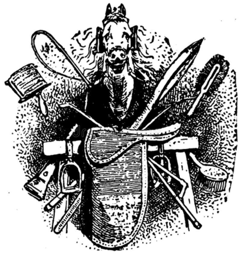 Cheval-002 Free Public Domain Cc0 Image