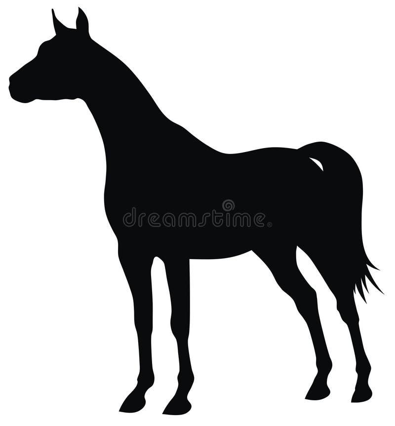 Cheval illustration de vecteur