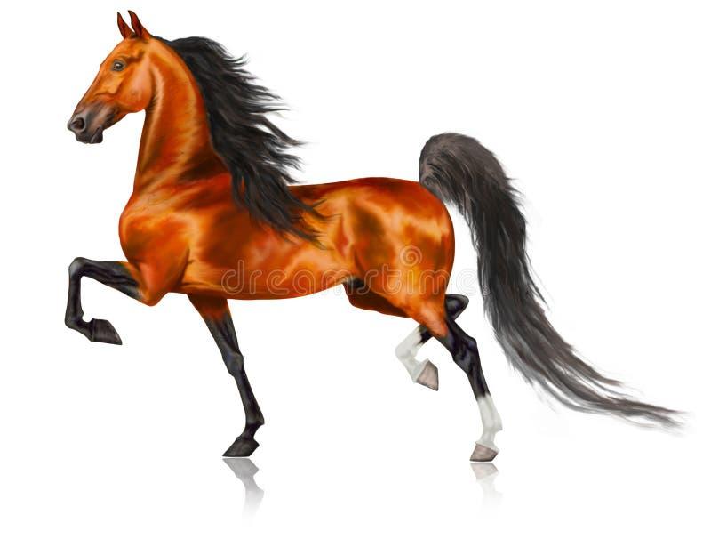 Cheval américain courant de Saddlebred illustration de vecteur