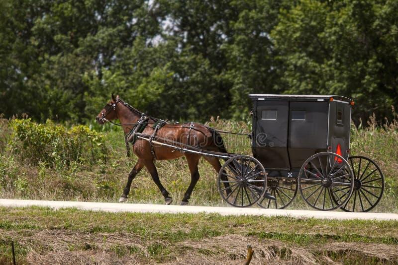 Cheval amish et boguet noir image libre de droits