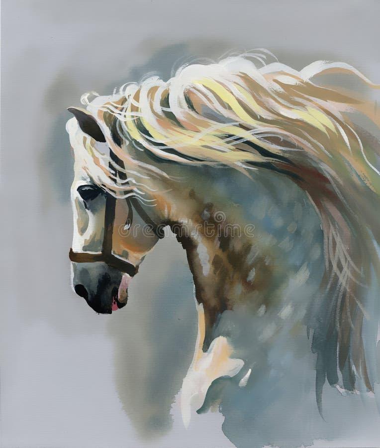 Cheval blanc illustration stock