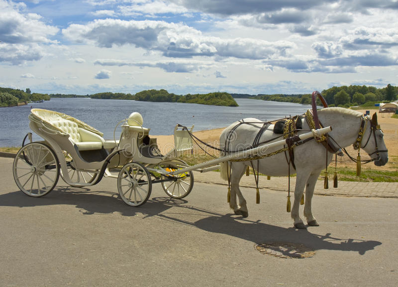 Cheval blanc avec le chariot blanc images libres de droits