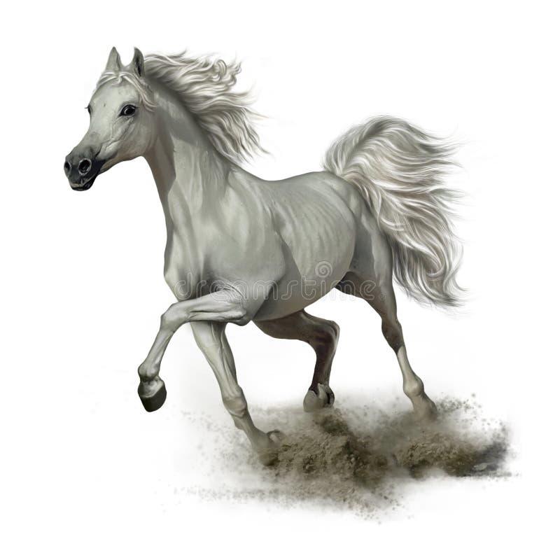 Cheval blanc courant illustration de vecteur