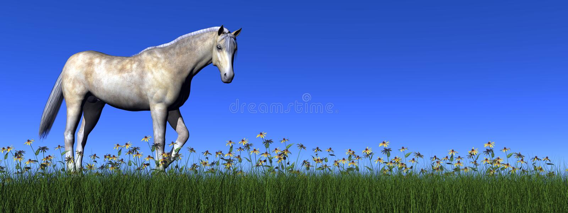 Cheval blanc - 3D rendent illustration stock