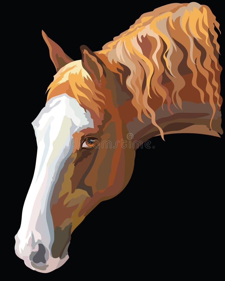 Cheval coloré portrait-4 illustration de vecteur