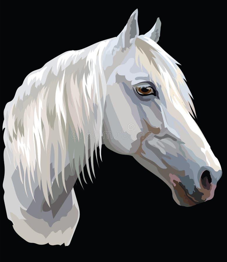 Cheval coloré portrait-6 illustration libre de droits