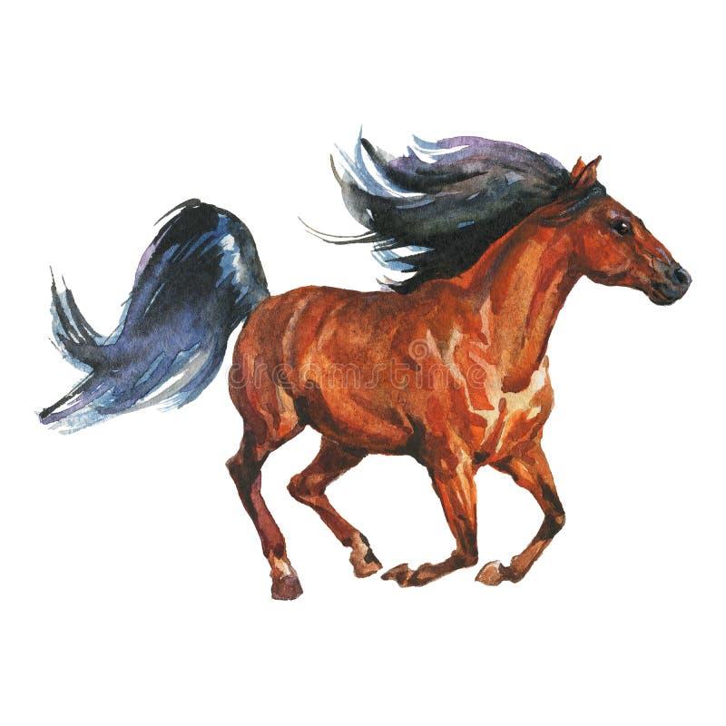 Cheval courant d'aquarelle illustration de vecteur