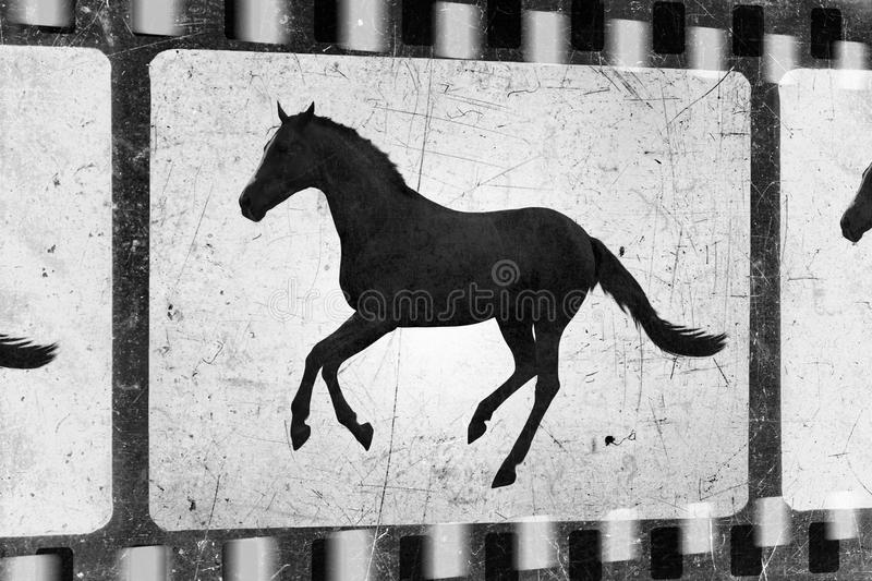 Cheval courant, vieux film image stock