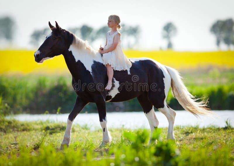 Cheval d'équitation d'enfant dans le pré image stock