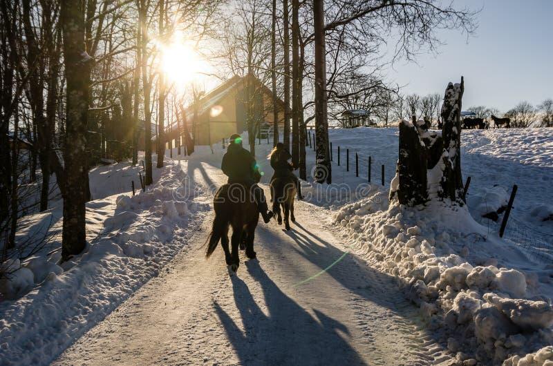 Cheval d'équitation de deux personnes dans le groupe tout près une ferme à Oslo Norvège Le bas soleil en hiver images libres de droits
