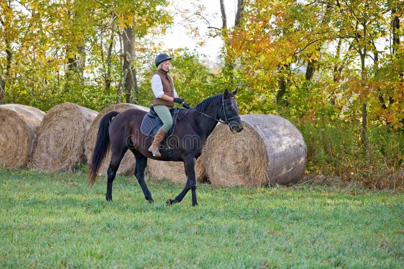 Cheval d'équitation de femme image stock