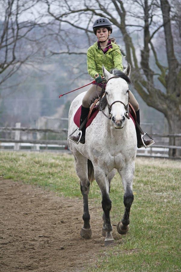 Cheval d'équitation de fille assez jeune photos libres de droits