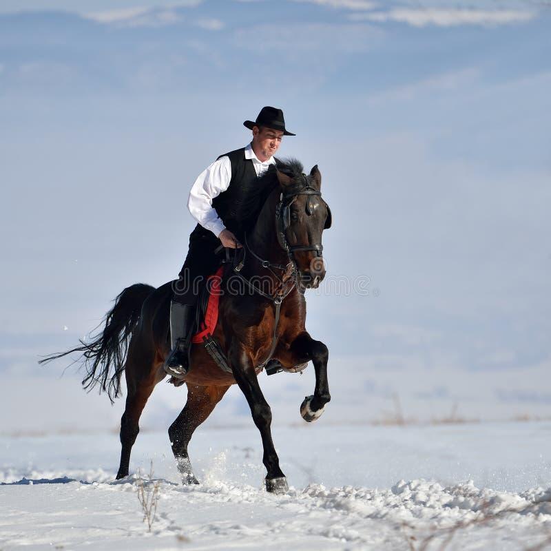 Download Cheval D'équitation De Jeune Homme Extérieur En Hiver Photo stock - Image du équestre, récréation: 56482678