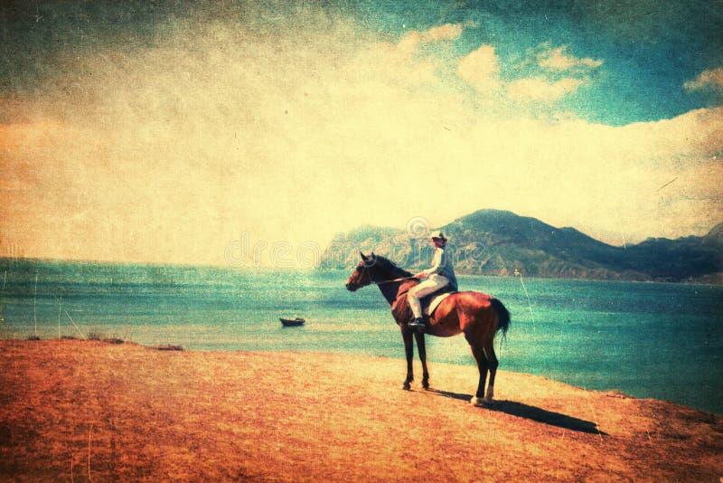 Cheval d'équitation sur la plage photos libres de droits