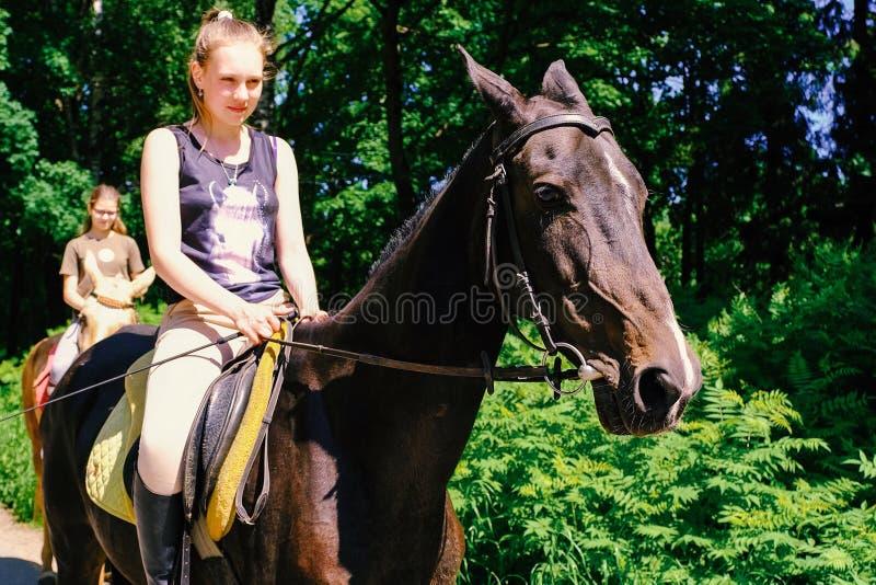 Cheval d'Akhal-teke Cheval d'Akhal-Teke de pur sang de museau, photo dehors Monté par un jeune cavalier St Petersburg Russie 06 1 photo stock