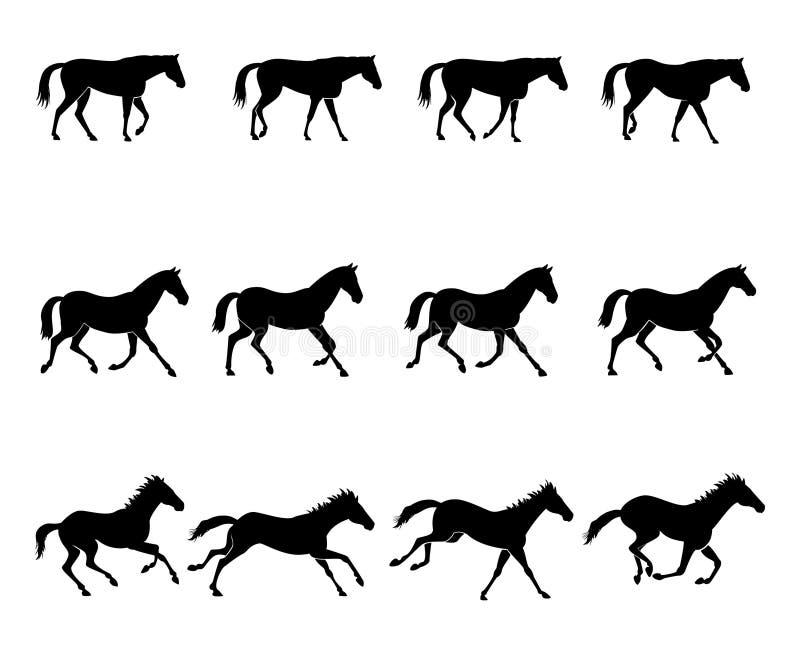cheval de démarches illustration de vecteur