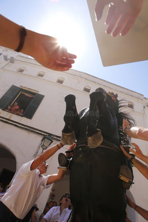 Cheval de festivité de cheval de St John reaaring sur ses jambes photo libre de droits