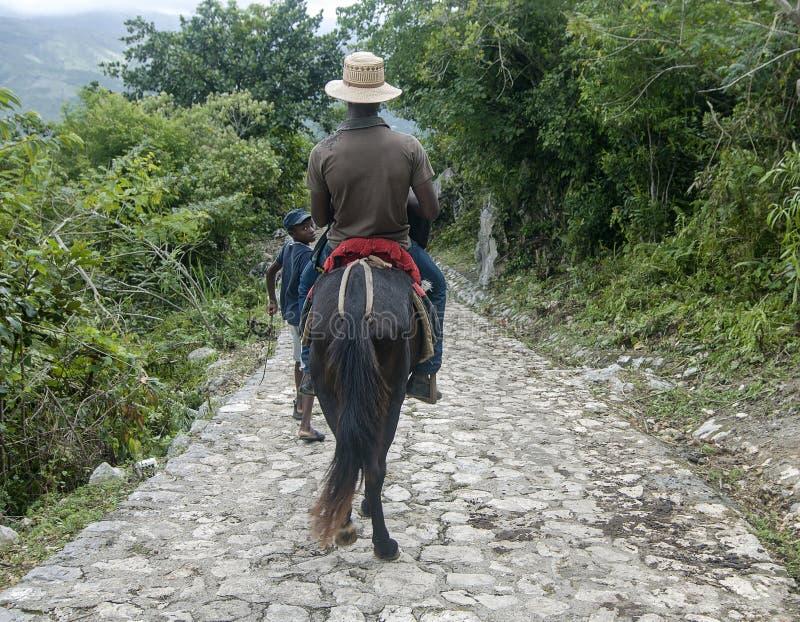Cheval de guidage d'enfant haïtien image libre de droits