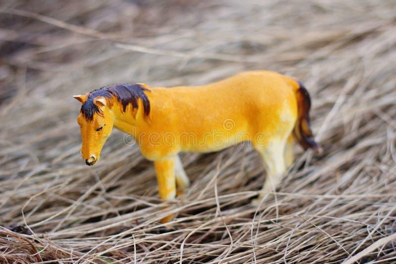 Cheval de jouet en nature photographiée comme vraie parmi images libres de droits