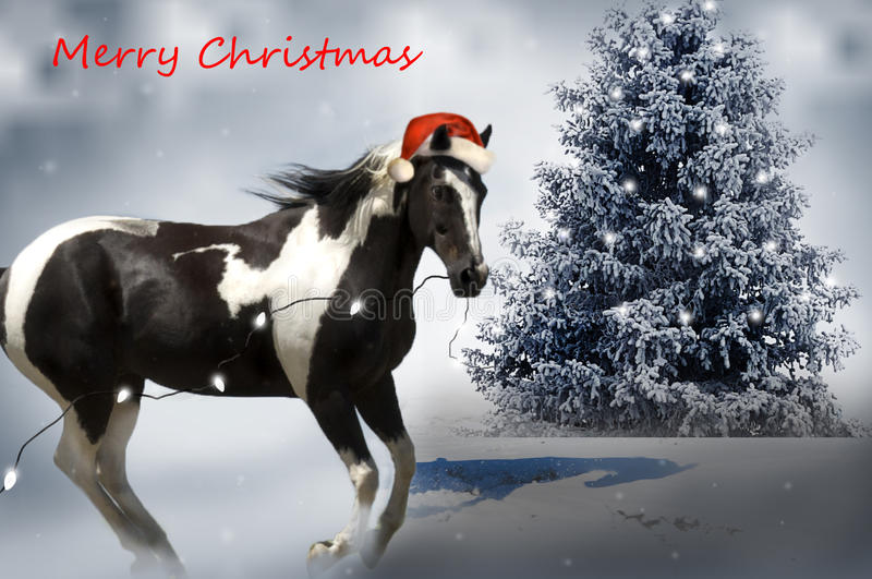 Cheval de Noël images stock