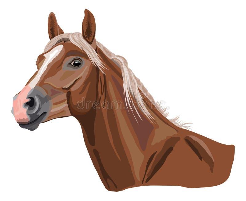 Cheval de palomino illustration de vecteur
