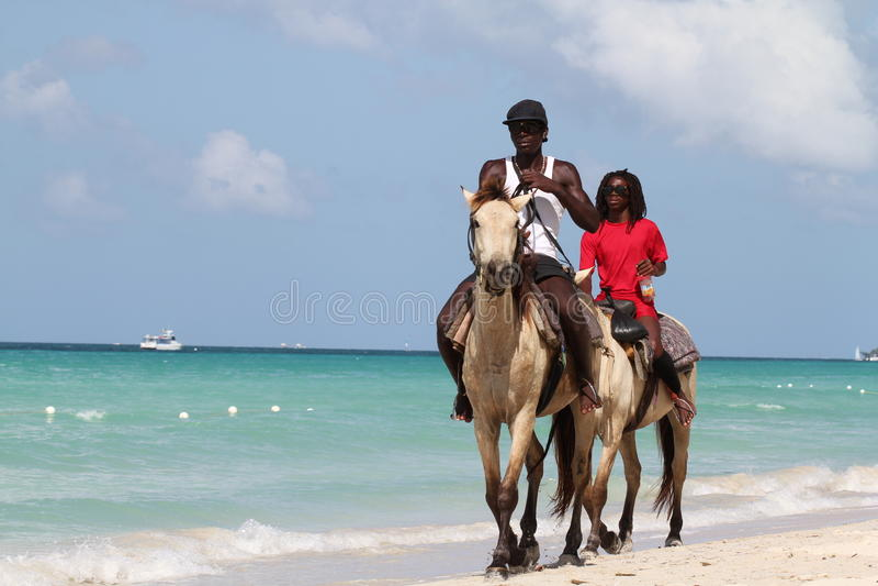 Cheval de tour sur la plage images libres de droits