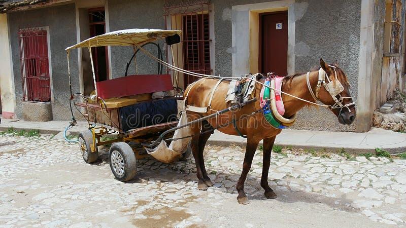 Cheval de trait avec la remorque au travail au Trinidad, Cuba image stock