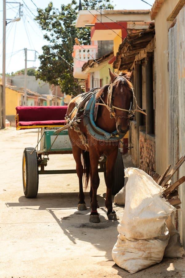 Cheval et chariot au Trinidad, Cuba image stock