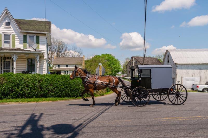 Cheval et chariot dans le pays amish photo stock