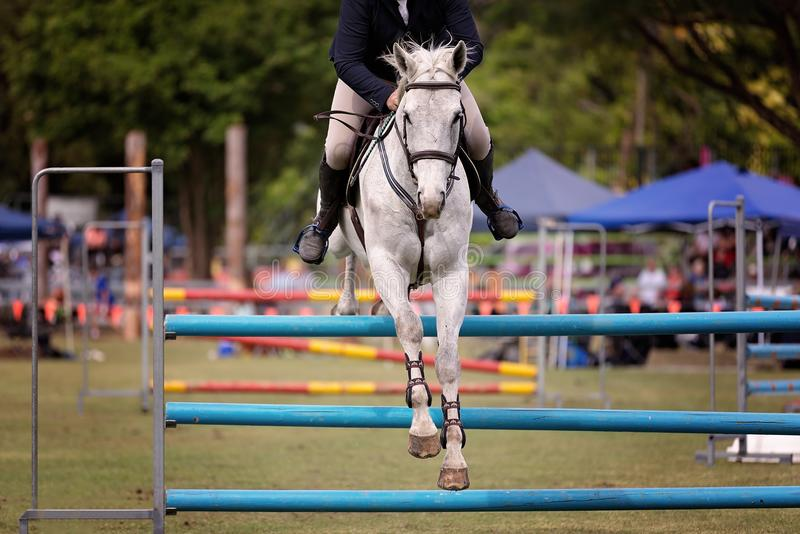 Cheval et Rider Show Jumping At une exposition de pays photos stock
