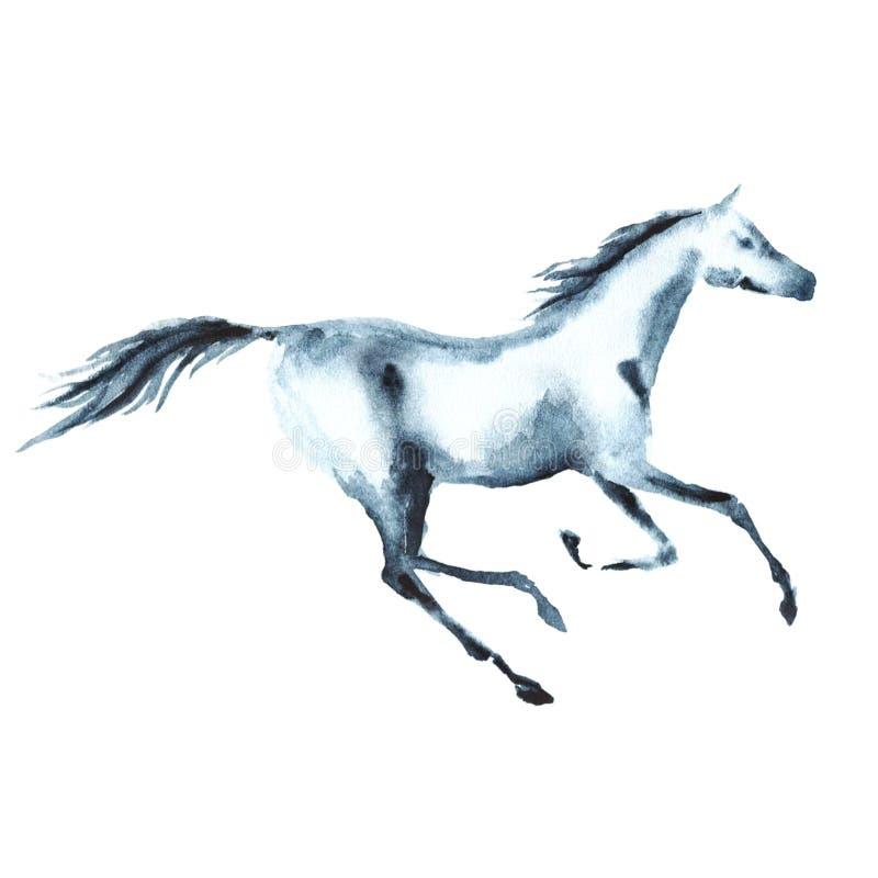 Cheval galopant d'aquarelle sur le blanc illustration stock