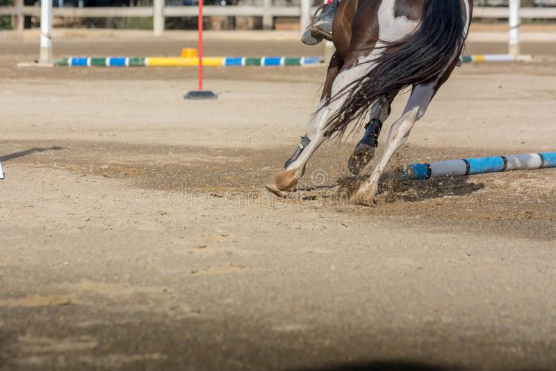 Cheval galopant sur le fond de tache floue à la concurrence équestre images stock