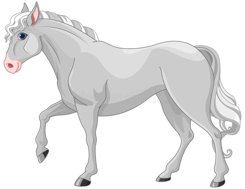 Cheval gris illustration libre de droits