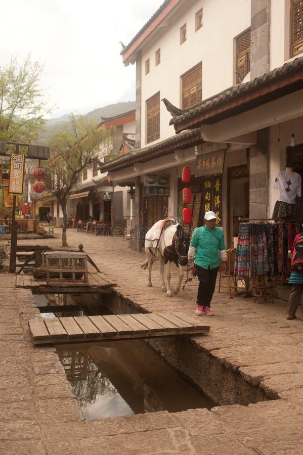 Cheval marchant autour de la ville antique de Shuhe. image libre de droits