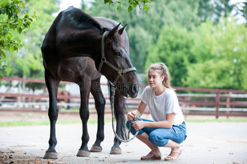 Cheval noir regardant fixement loin près de son propriétaire - jeune adolescente images libres de droits
